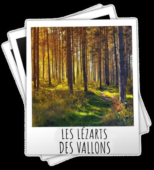 lezarts-des-vallons-vignette